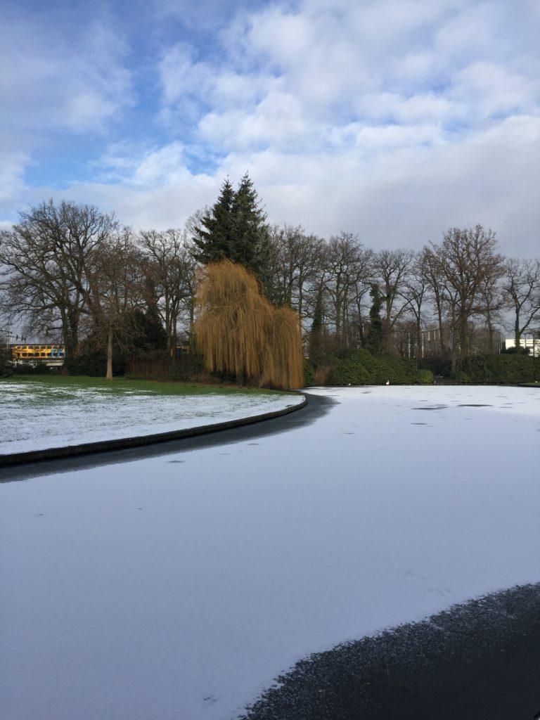 Infelizmente só achei fotos do parque que eu tirei no inverno. O lago tinha congelado e as criancinhas estavam correndo em cima, admito que tinha medo que o gelo quebrasse.