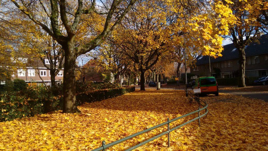 Parque perto de onde eu morava em Tilburg. Eu fazia o sacrifício de passar por ali diariamente a caminho da faculdade...